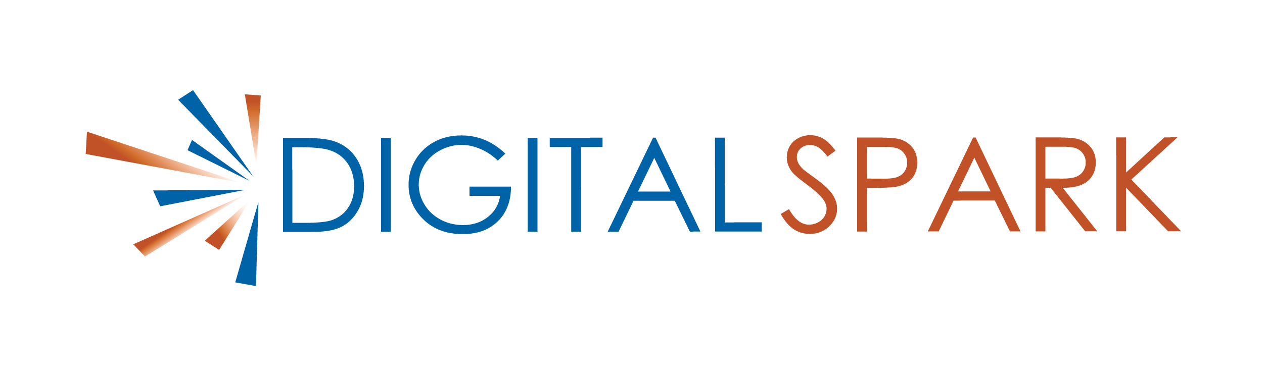 Digital Spark Logo